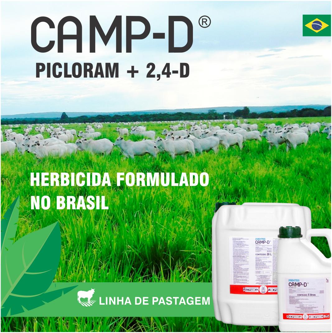 CAMP_D 00001