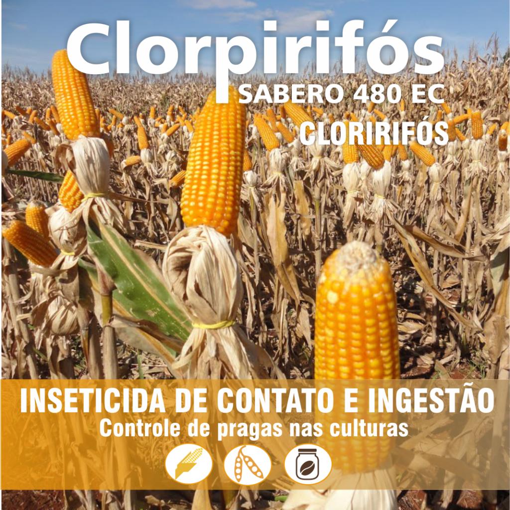Clorpirifos_imagem real