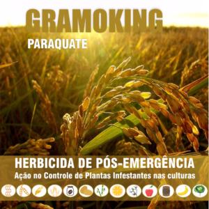 Gramoking