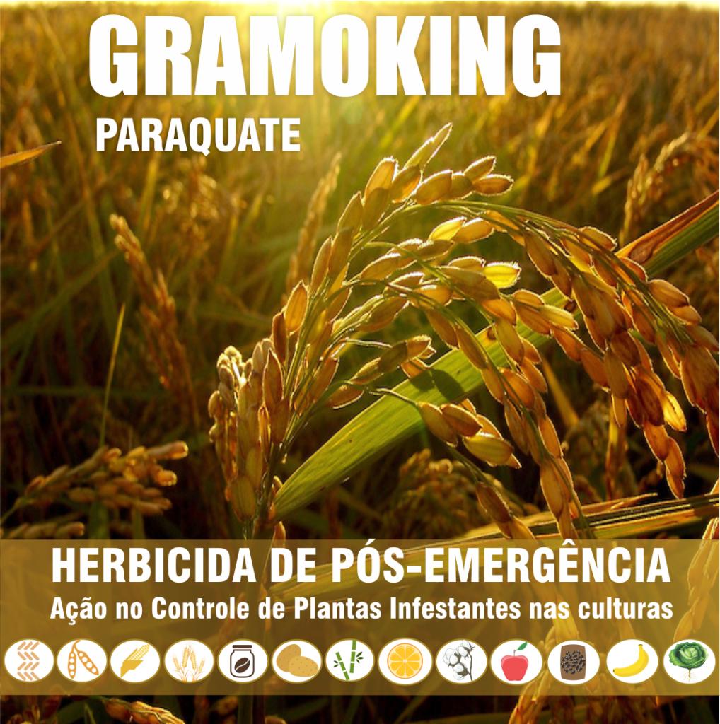 Gramoking_0002