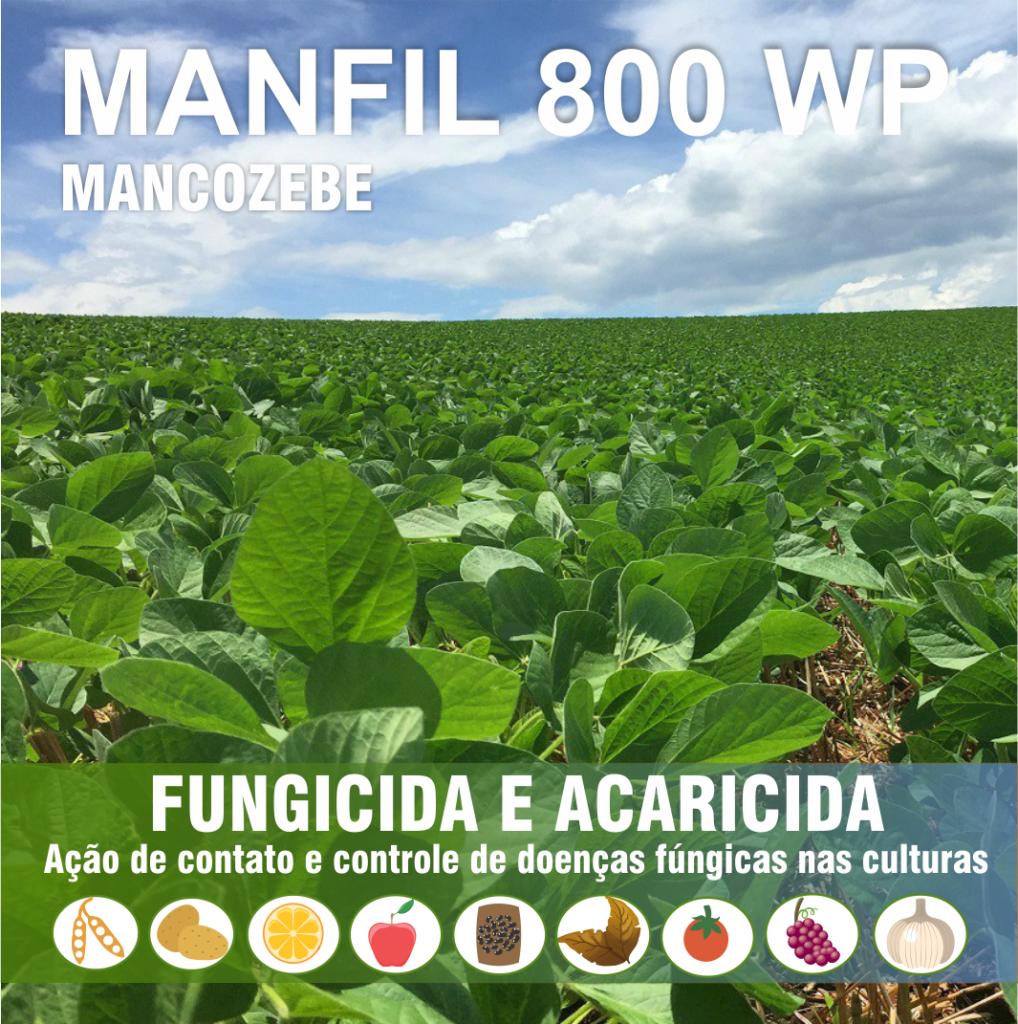 Manfil_imagem real