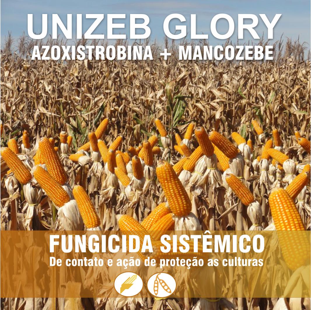 Unizeb Glory_Imagem real