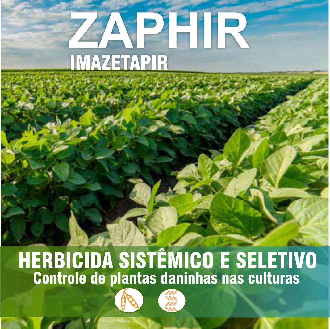 Zaphir_Imagem